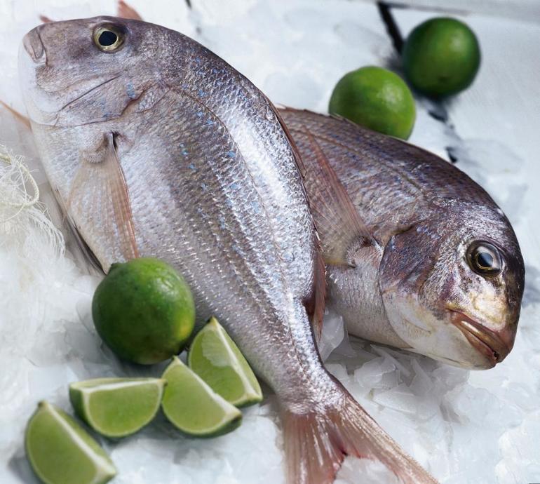 К чему видеть во сне рыбу