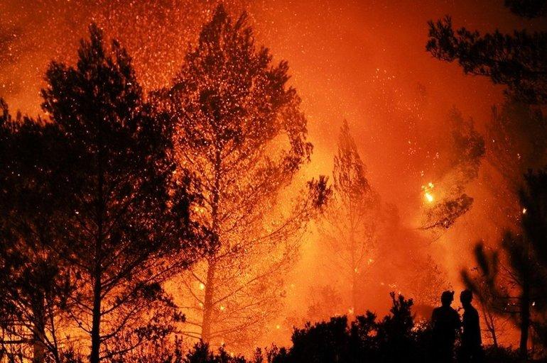 Пожар в лесу во сне