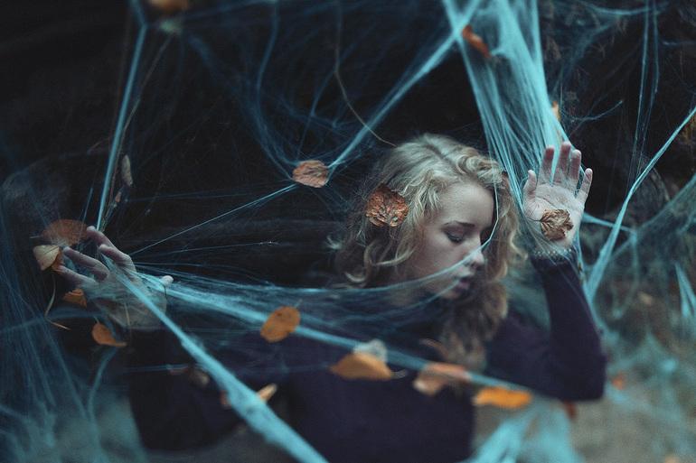 Запутаться в паутине с пауками