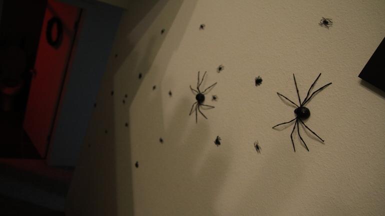 Много черных паучков в темной комнате
