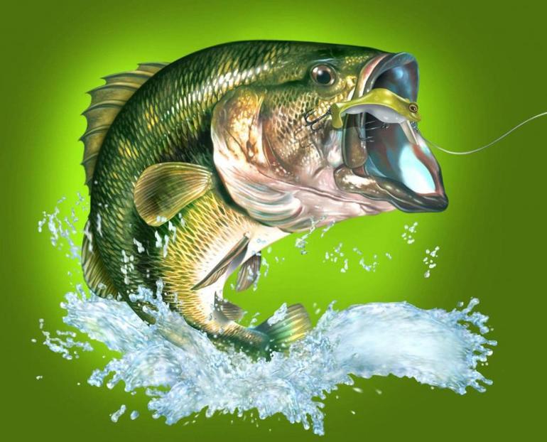 к чему снится живая рыба карась