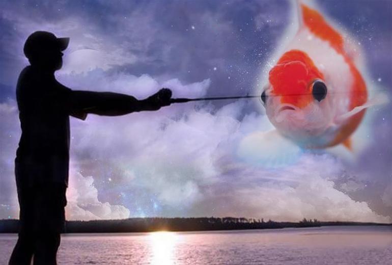 К чему снится рыба в воде сонник
