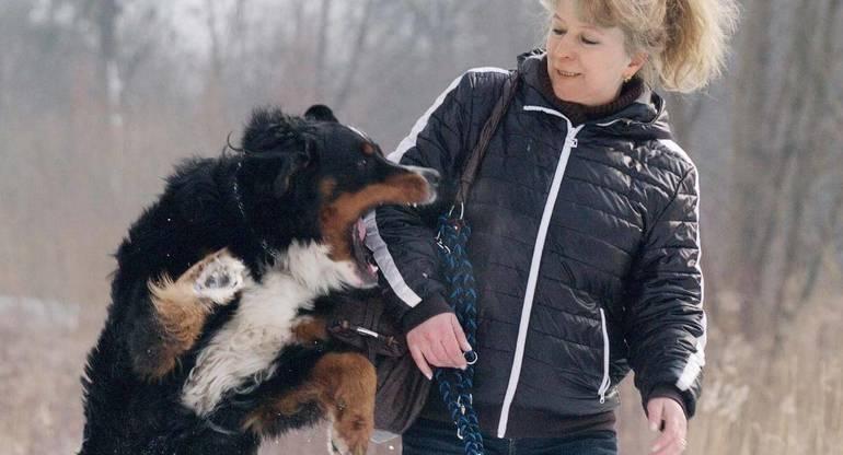 Пес кусает хозяйку