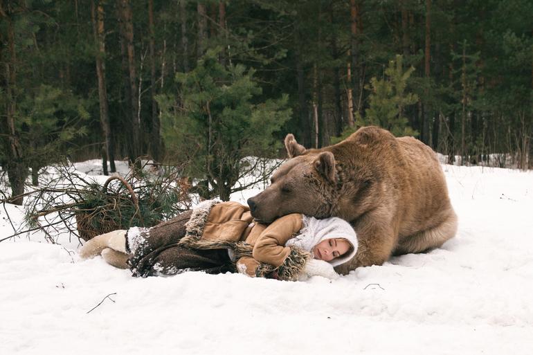 Толкование снов о медведе