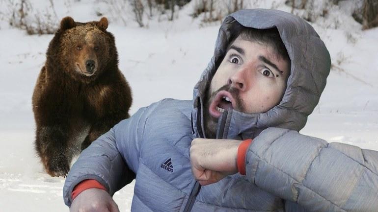 Значение снов о медведях для мужчин