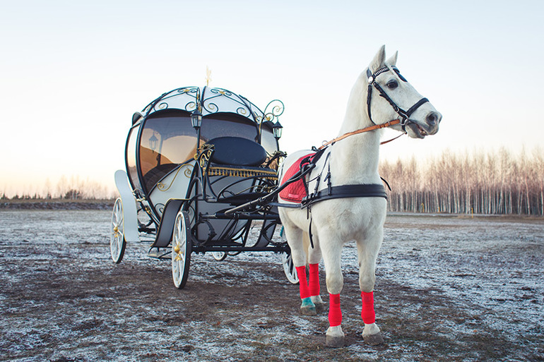 Сновидение о запряжённой белой лошади