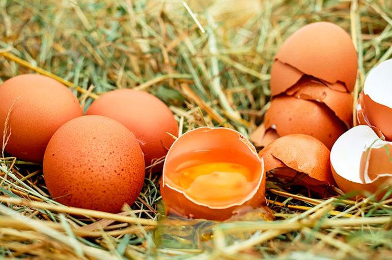 Сонник куриное яйцо