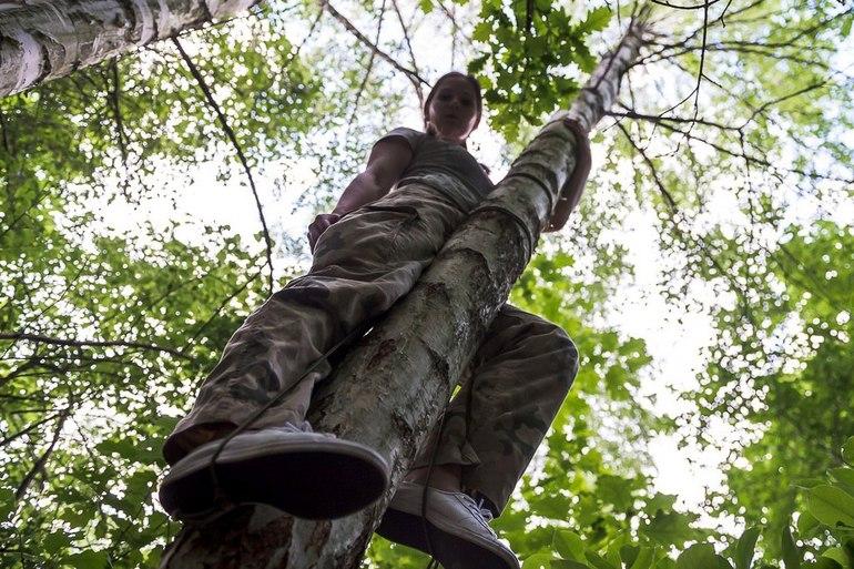 Прятаться на дереве