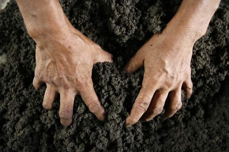 Ковыряться в почве