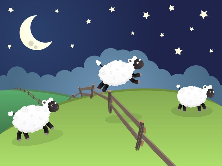 к чему снятся овцы девушке