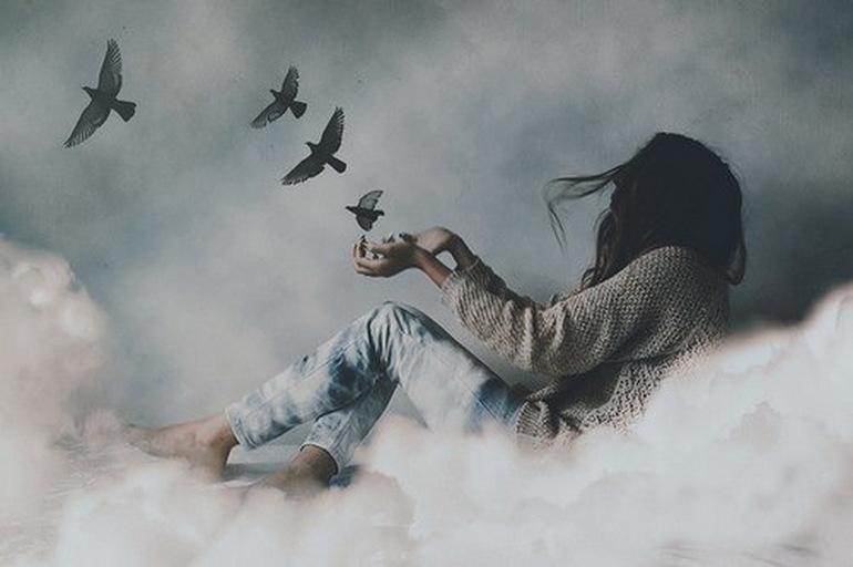 Много птиц во сне