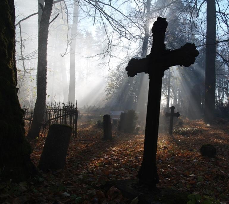 Сонник памятник на кладбище