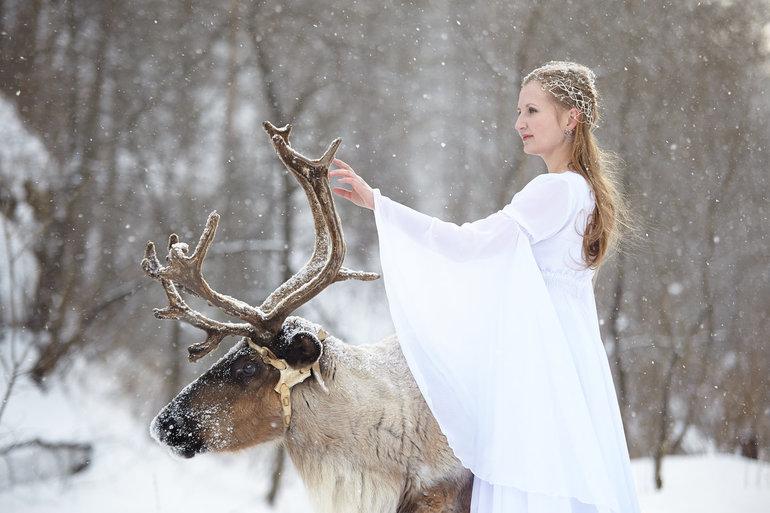 К чему снится олень с большими рогами или оленёнок