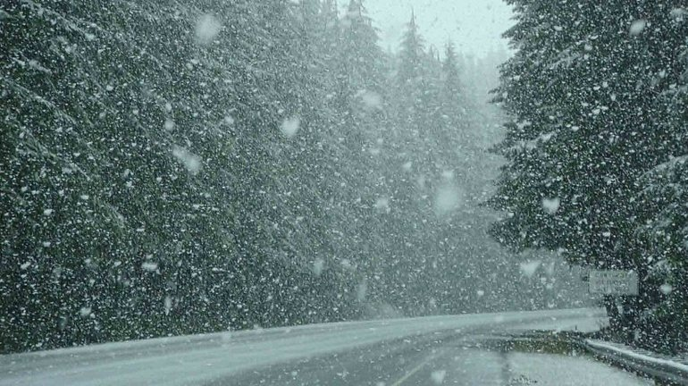 Снится снегопад
