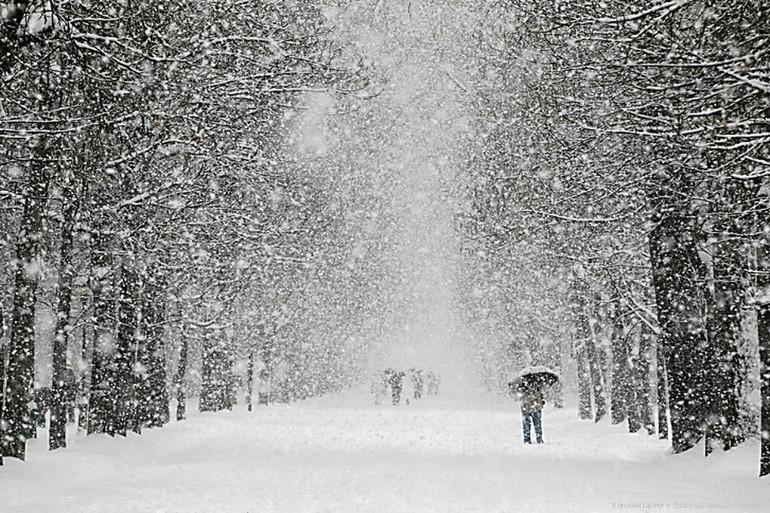 Снится снег осенью