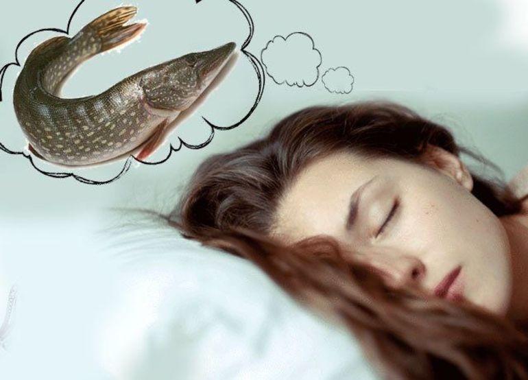 К чему снится маленькая и большая рыба