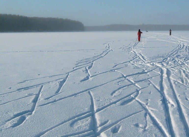 Характерные лыжные полосы на снегу