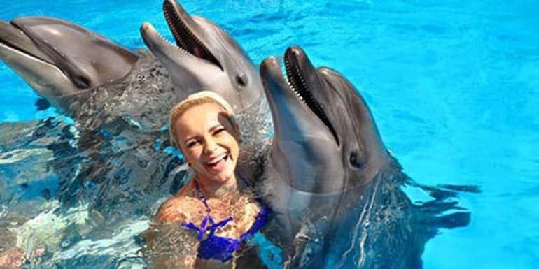 Плавать с дельфинами