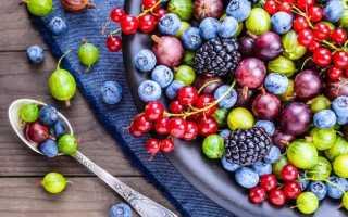 К чему снятся красные и черные ягоды: значение снов по сонникам