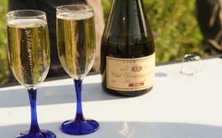 К чему снится бутылка или бокал с шампанским: авторитетные сонники