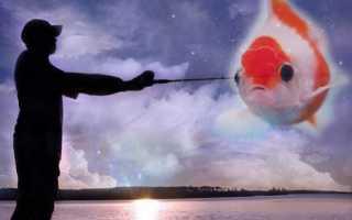 Толкования сонников: к чему снится живая рыба