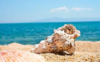 Толкования пляжа, моря и песка по различным сонникам