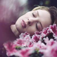 Сон, где снятся вещи розового цвета: толкование по соннику