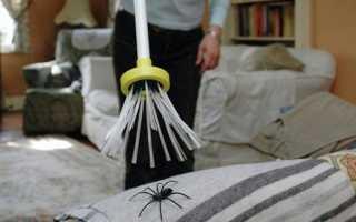 Что означает убить во сне большого или маленького паука по соннику
