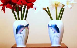 Значение сновидения про вазу по различным сонникам