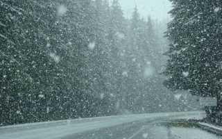 К чему снится снегопад: подробное толкование по сонникам