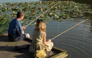 Ловить рыбу удочкой: к чему снится женщине