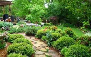 Сонник про сад: что может означать сон