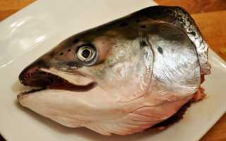 К чему снится голова рыбы: трактовки сонников
