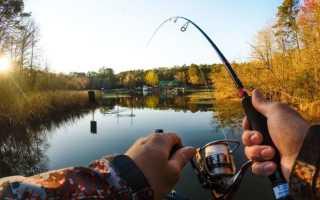 К чему женщине или мужчине снится рыбалка