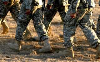 К чему могут присниться военные: мнение сонников
