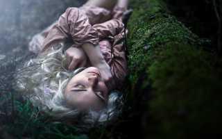 К чему снится лес: толкование сна для мужчин и женщин