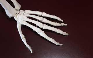 К чему снятся кости: толкование по различным сонникам