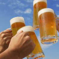 К чему снится пиво: трактовка популярных сонников