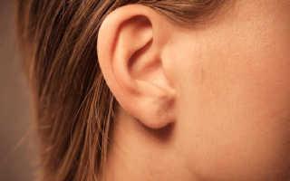 Что означает ухо в сонниках популярных толкователей