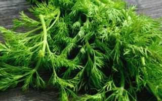 Сонник: к чему снится укроп, петрушка и прочая зелень