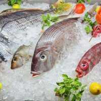 К чему снится замороженная рыба мужчине и женщине