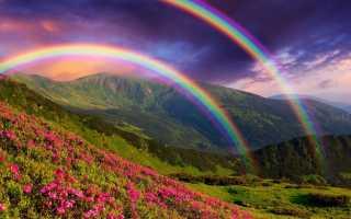 К чему снится радуга в небе: толкования сонников