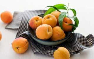 К чему снятся крупные абрикосы: значения из разных сонников