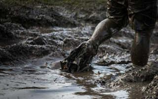 К чему снится грязь дома, на человеке и на дороге по сонникам