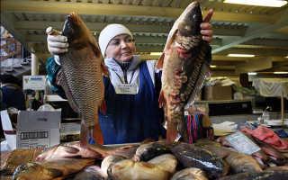 К чему снится продавать рыбу: толкования сонников