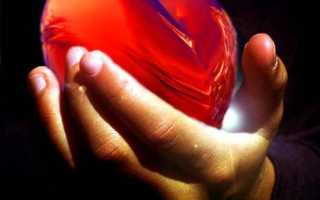 Сердце в сонниках: к чему снится этот символ