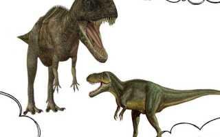 К чему снится видеть динозавров: значения из разных сонников