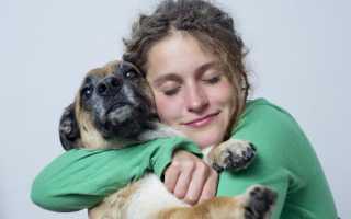 Обнимать собаку во сне: толкование по сонникам
