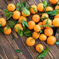 К чему снится много спелых или гнилых мандаринов по сонникам