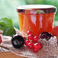 9 видов варенья, наиболее полезных для здоровья